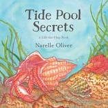 Tide Pool Secrets